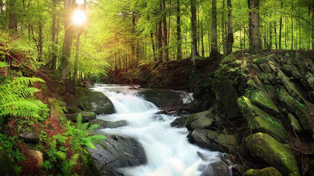 Una cascada en un río de montaña