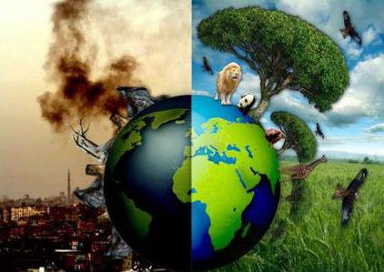 Opinión | Medio ambiente, a toda marcha, atrás… – Montevideo Portal