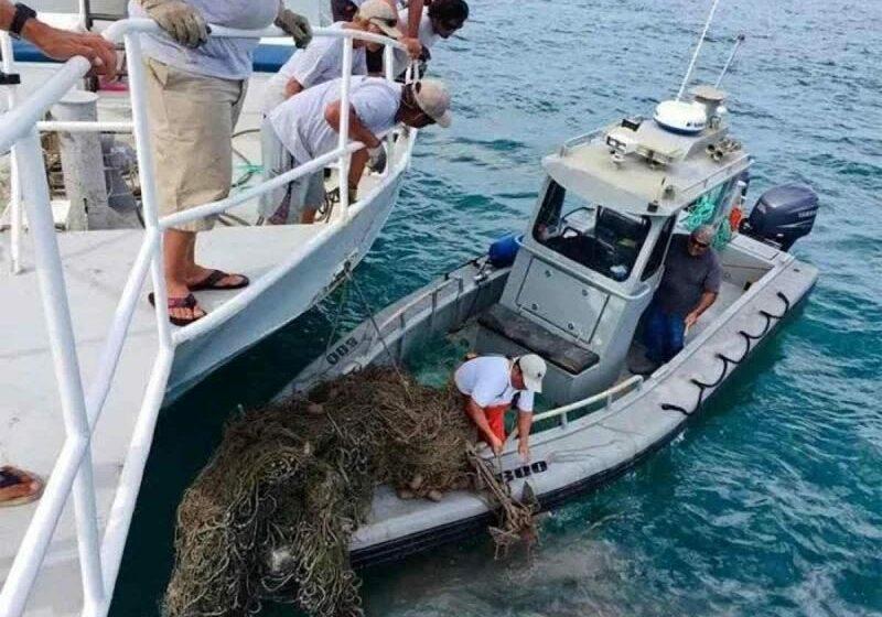 Por la vaquita marina, recuperan redes fantasmas en la ANP del Golfo de California – Punto MX