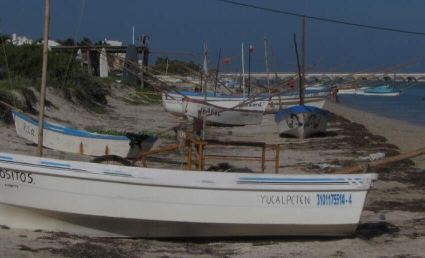 """Sin pesca por la """"calma chicha"""" – El Diario de Yucatán"""