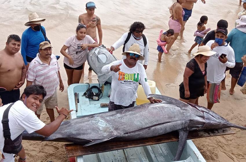 Pescan gran marlín en la Costa de Oaxaca