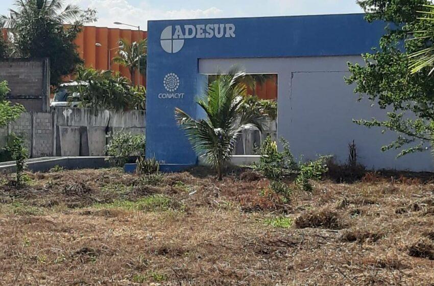 Abandona Conacyt instalaciones científicas en Acapulco