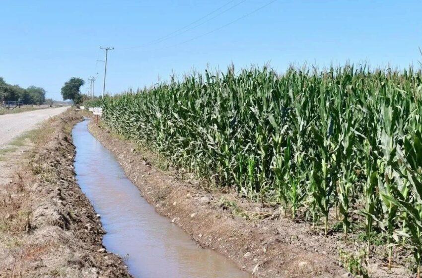 Solicita Conagua iniciar ciclo agrícola en Sinaloa con rescate de agua – Debate