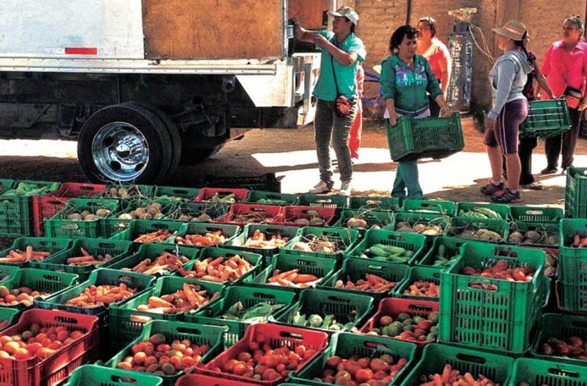 Bancos de alimentos, el puente entre abundancia y necesidad – El Economista (México)