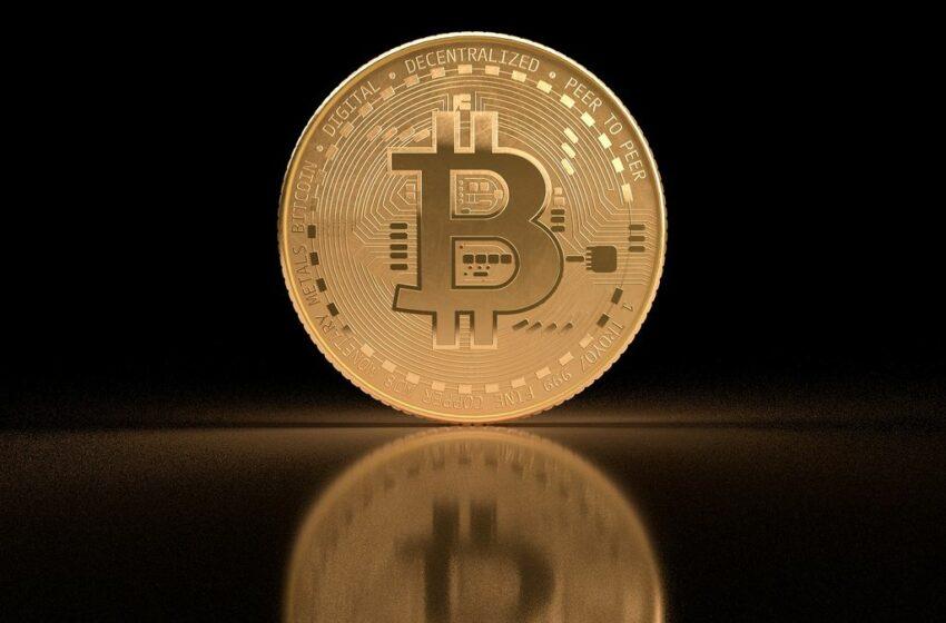 Bitcoin retrocede levemente en los u$s54.000 y consolida un crecimiento semanal superior al 14%