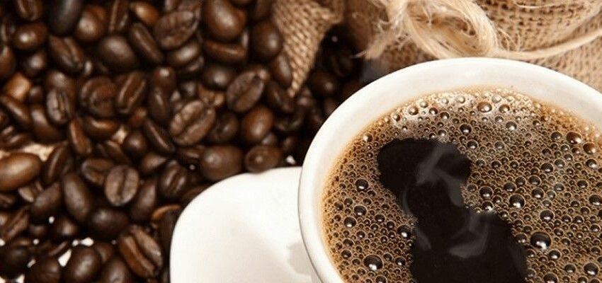 Café, flores y plátanos, los productos agrícolas más exportados por Colombia … – Opportimes