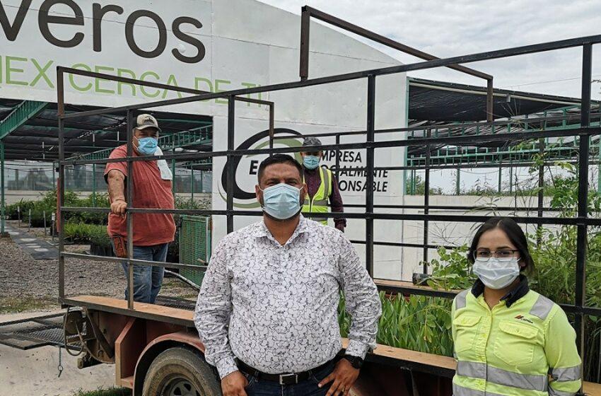 Cemex pinta de verde más municipios en Sonora – El Imparcial