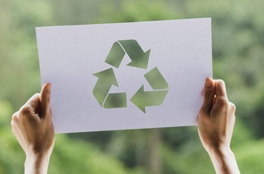 Agenda Sustentable: Cómo cuidar el medio ambiente desde tu hogar o desde tu empresa – T13