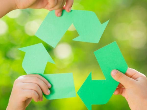 Cero papel: una apuesta colectiva por el medio ambiente | Más Contenido | Portafolio