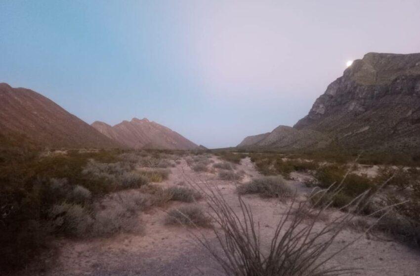 Invita Medio Ambiente de Lerdo al concurso de sonidos del desierto chihuahuense – El Sol …