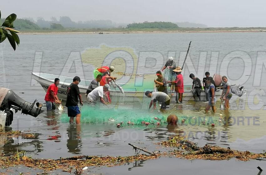 Desesperación de pescadores en el municipio de Cazones – La Opinión De Poza Rica