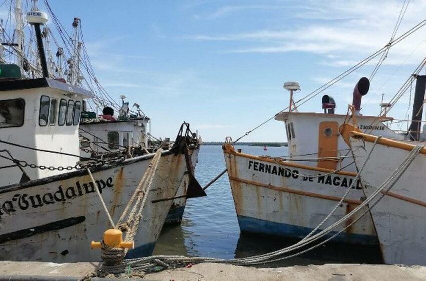 """Ante la amenaza de """"Pamela"""", se resguardan embarcaciones en Mazatlán – El Sol de …"""