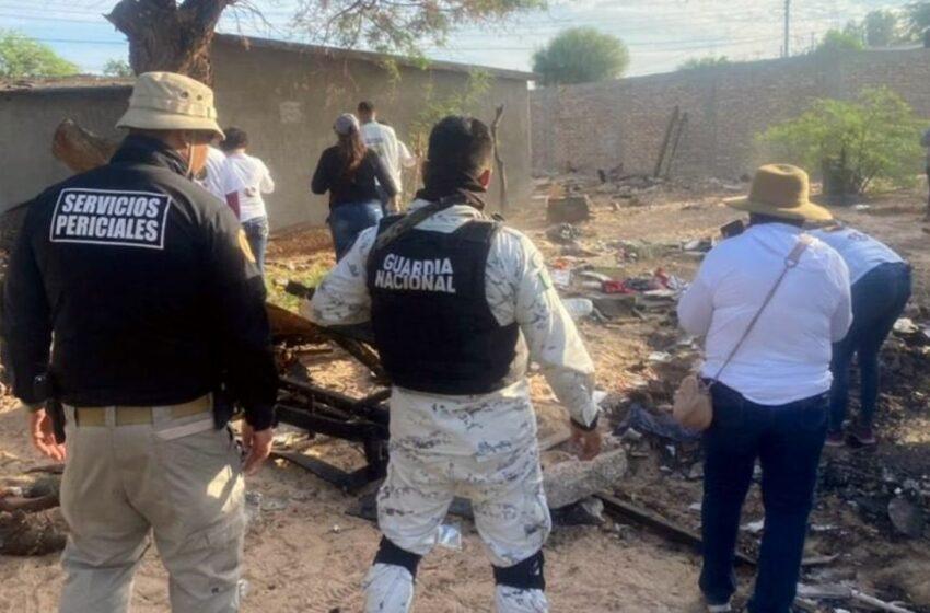 Autoridades y colectivos de búsqueda encuentran restos humanos en San Luis Río … – Tribuna