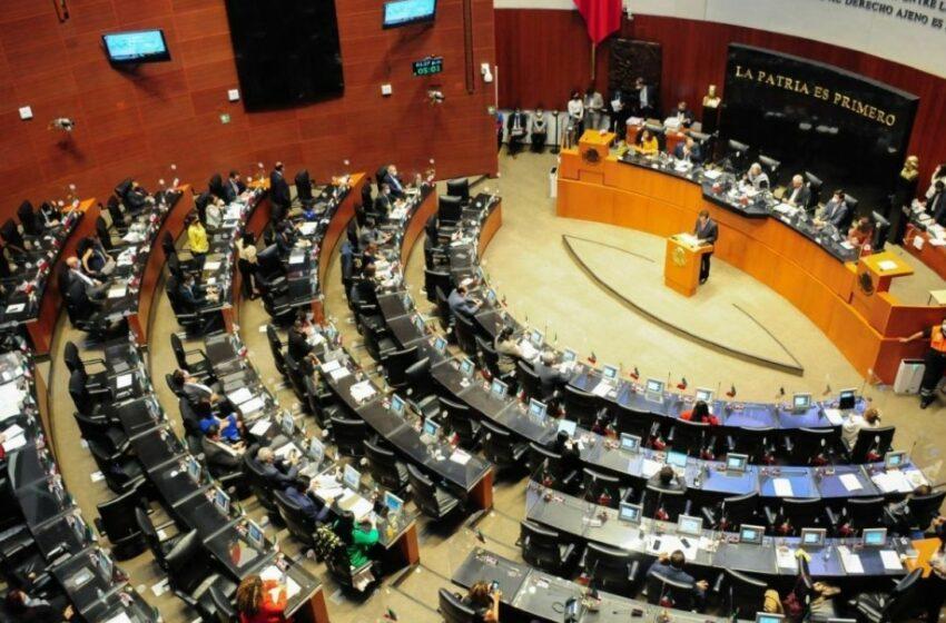Senado garantiza elección de magistrados sin favoritismos   El Heraldo de México