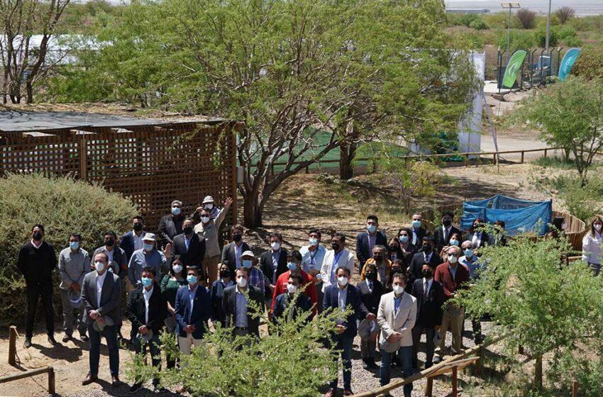 Parque Explora Lomas reabre sus puertas a la comunidad – Timeline Antofagasta