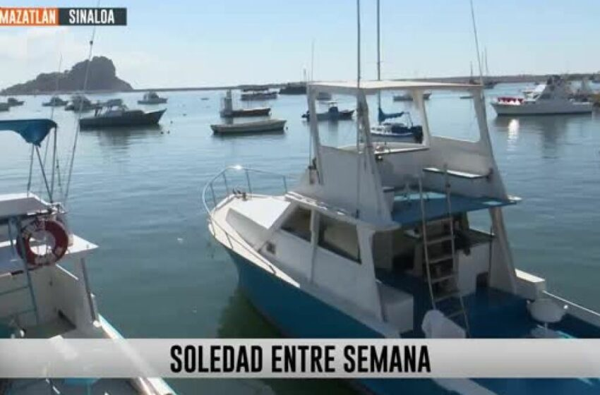 Catamaranes en Mazatlán permanecen vacíos entre semana – ADN 40