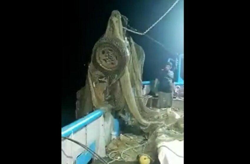 Circula video de barco camaronero que atrapó… ¡un auto! En aguas de barrón, Mazatlán – Debate